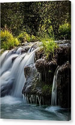 Canvas Print featuring the photograph Rogue River by Randy Wood