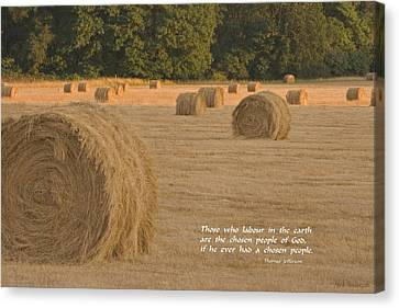 Rolled Bales In Western Oregon Canvas Print by Mick Anderson