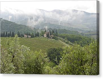 Rolling Green Hills, Wine And Olive Canvas Print by Keenpress