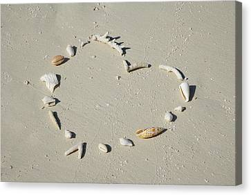 Romantic Message On Beach In Coral And Shells. Canvas Print by Rosemary Calvert