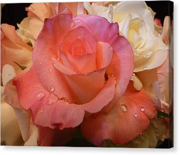 Canvas Print featuring the photograph Romantic Roses And Raindrops by Cindy Wright