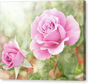 Romantic Roses In Pink Canvas Print