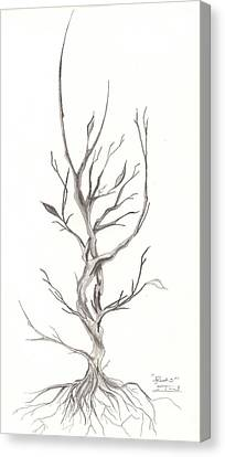 Roots Canvas Print by Jeff Gould