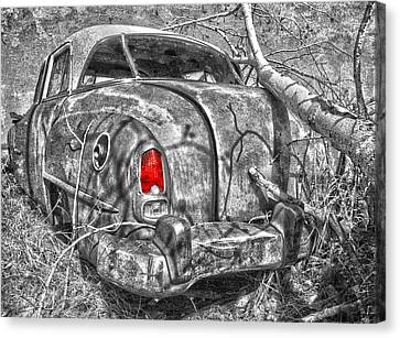 Roots Of A Journey  Canvas Print by Jerry Cordeiro
