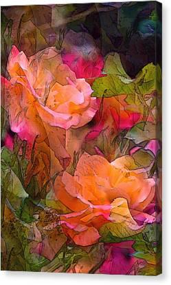 Rose 146 Canvas Print by Pamela Cooper