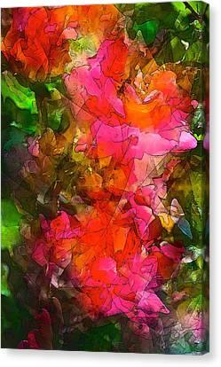 Rose 147 Canvas Print by Pamela Cooper