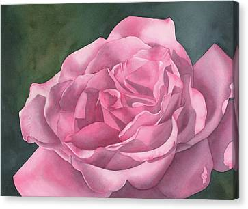 Rose Blush Canvas Print by Leona Jones