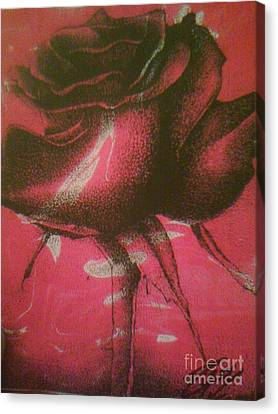Rose Bud 2 Canvas Print by Derrick Smith