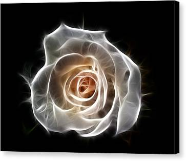 Rose Of Light Canvas Print