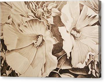 Rose Of Sharon Canvas Print by Yvonne Scott
