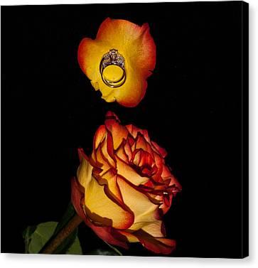 Rose Petals And Wedding Rings 1 Canvas Print by Douglas Barnett
