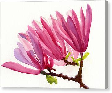 Rose Violet Magnolia Canvas Print