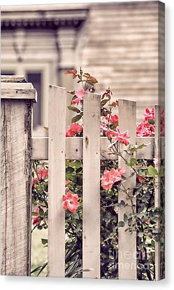 Roses At The Gate Canvas Print by HD Connelly