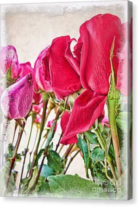Roses In White Canvas Print by Joan  Minchak
