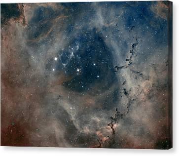 Rosetta Nebula Canvas Print by Andre Van der Hoeven