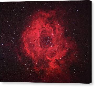 Rosette Nebula Canvas Print by Pat Gaines