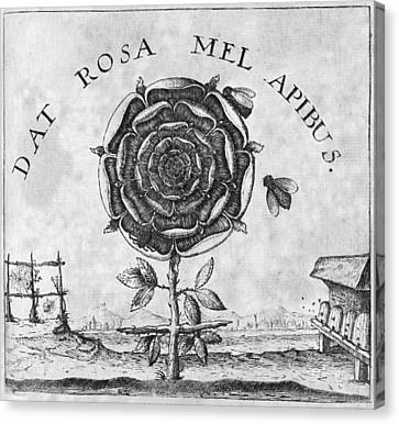 Rosicrucian Mystical Symbol Canvas Print by Middle Temple Library