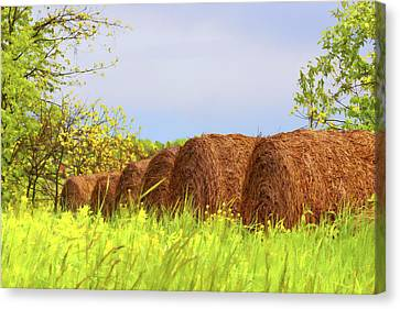 Bales Canvas Print - Round Bales by Tom Mc Nemar