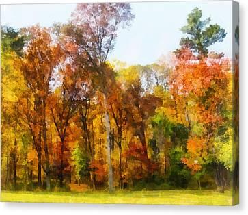 Row Of Autumn Trees Canvas Print by Susan Savad