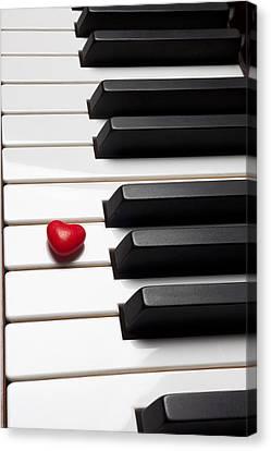 Row Of Piano Keys Canvas Print by Garry Gay