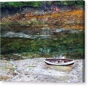 Rowboat In The Slough Canvas Print by Michele Cornelius