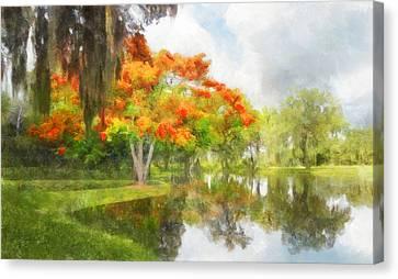 Royal Poinciana Lake Canvas Print by Francesa Miller