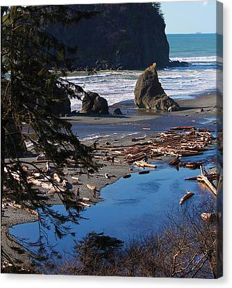 Canvas Print featuring the photograph Ruby Beach IIi by Jeanette C Landstrom