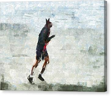 Run Rabbit Run Canvas Print by Steve Taylor
