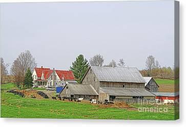 Rural Vermont Farm Scene Canvas Print by Deborah Benoit