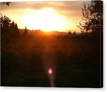 Russian River Sunrise Canvas Print