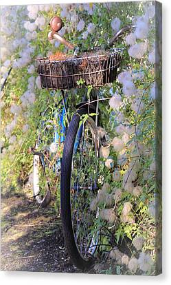 Rustic Bicycle Canvas Print by Athena Mckinzie