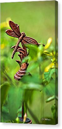 Rusty Dragonfly Canvas Print by Christopher Holmes