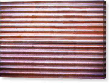 Stainless Steel Canvas Print - Rusty Metal by Tom Gowanlock