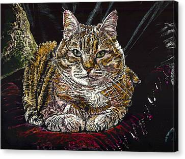 Ruthie The Cat Canvas Print by Robert Goudreau