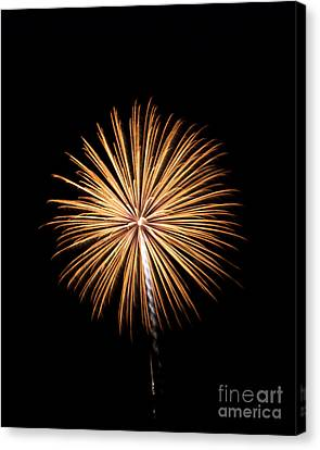 Canvas Print featuring the photograph Rvr Fireworks 27 by Mark Dodd