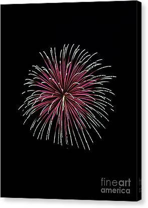 Canvas Print featuring the photograph Rvr Fireworks 8 by Mark Dodd