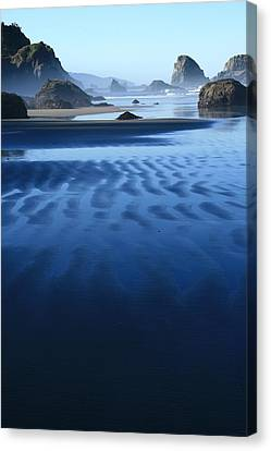 S Ecola Oregon Canvas Print by Steven A Bash