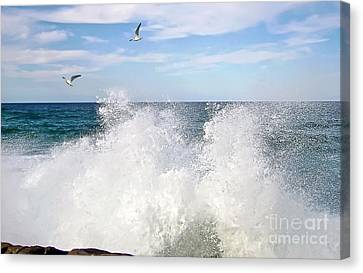 S P L A S H Canvas Print by Kaye Menner