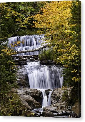 Sable Falls Canvas Print