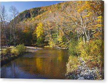 Saco River - White Mountains National Forest New Hampshire Canvas Print by Erin Paul Donovan