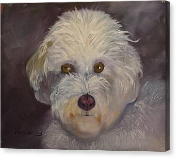 Canvas Print featuring the painting Sadie by Carol Berning