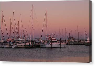 Canvas Print featuring the photograph Safe Harbor by Brian Wright