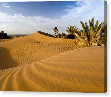 Sahara Desert At M'hamid, Morocco, Africa Canvas Print by Ben Pipe Photography