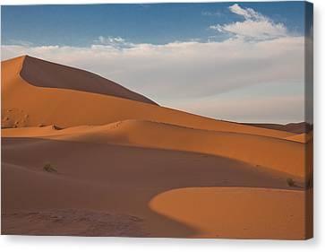 Sahara Sanddunes Canvas Print by Leo Keijzer