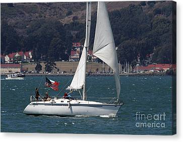Sail Boats On The San Francisco Bay - 7d18326 Canvas Print by Wingsdomain Art and Photography