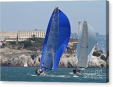 Alcatraz Canvas Print - Sail Boats On The San Francisco Bay - 7d18355 by Wingsdomain Art and Photography