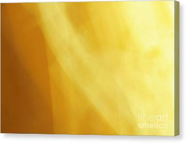 Sail The Sunset Abstract Canvas Print