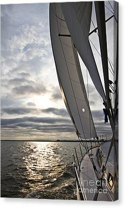Sail Boats Canvas Print - Sailboat Sailing Beneteau 49 Charleston Harbor by Dustin K Ryan