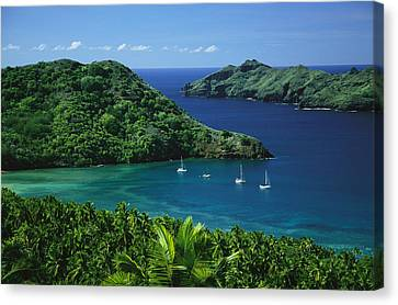 Sailboats Anchored In A Cove Of Blue Canvas Print by Tim Laman