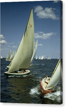 Sailboats Cross A Starting Line Canvas Print by B. Anthony Stewart